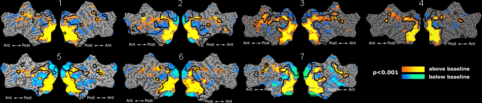 Mit fmri clustering validation.png