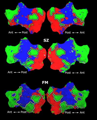 Mit fmri clustering parcellation3 shb1 3.png