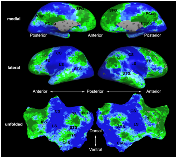 Mit fmri clustering parcellation2 xsub.png