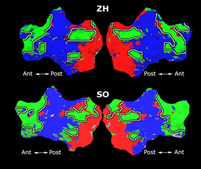 Mit fmri clustering parcellation3 shb4 5.png
