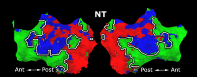 Mit fmri clustering parcellation3 shb7.png